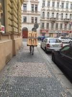 stěhování Polná